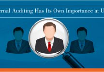 internal-auditing-assignment-writing-help
