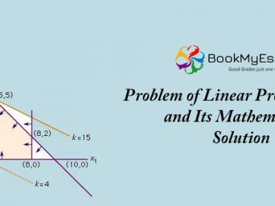 Linear Programming assignment help