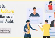 internal-auditor-basics