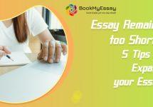 essay-writing-help-service