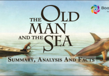 book-summary-facts-analysis