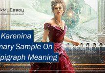 Anna-Karenina-Summary-Sample