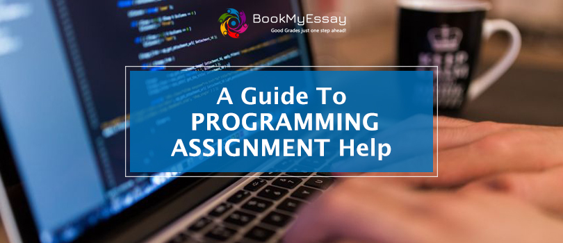 A Guide to Programming Assignment Help